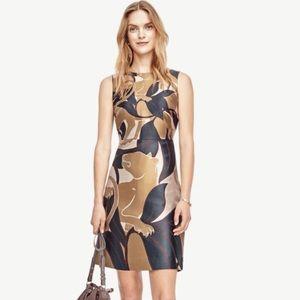 NWT ANN TAYLOR▪️Jungle Cat Flare Dress. Sz 6